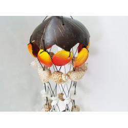 Coconut Deniz Kabuğu Süs